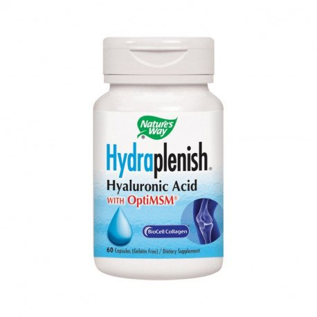 Secom Hydraplenish Plus MSM, 60 capsule
