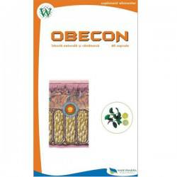 Obecon x 60cps.