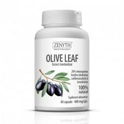 Olive Leaf Extract 400mg, 60 capsule, Zenyth